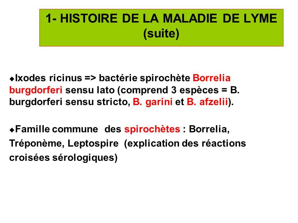 6 Ixodes ricinus => bactérie spirochète Borrelia burgdorferi sensu lato (comprend 3 espèces = B. burgdorferi sensu stricto, B. garini et B. afzelii).