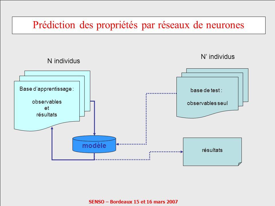 SENSO – Bordeaux 15 et 16 mars 2007 Prédiction des propriétés par réseaux de neurones Base dapprentissage : observables et résultats N individus modèl