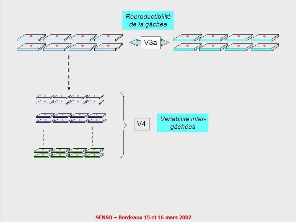 SENSO – Bordeaux 15 et 16 mars 2007 V3 V3a Reproductibilité de la gâchée V4 Variabilité inter- gâchées