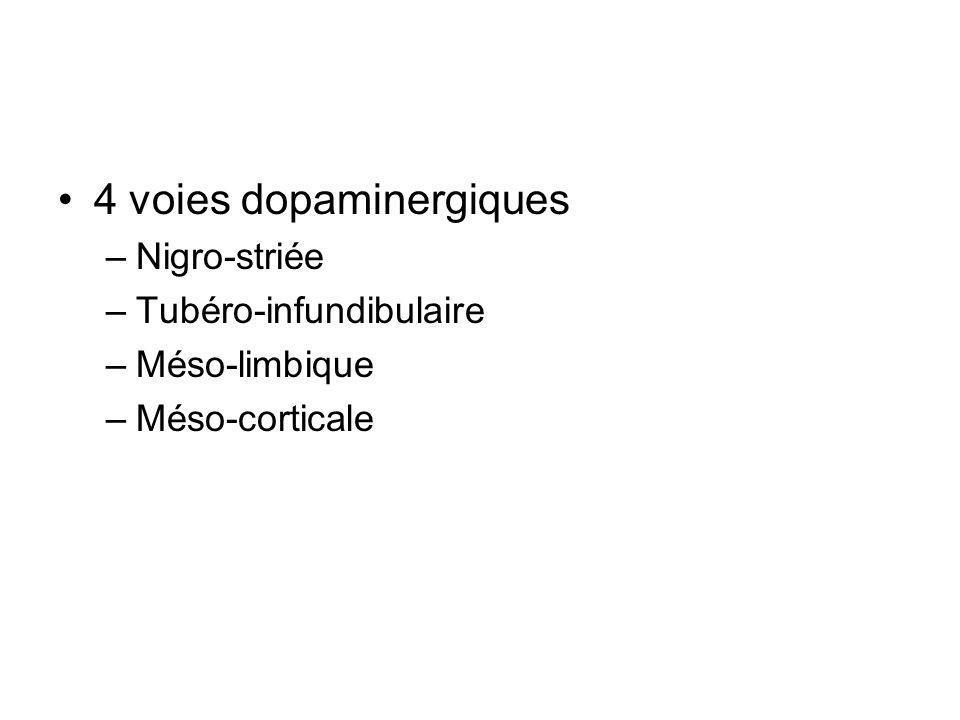 4 voies dopaminergiques –Nigro-striée –Tubéro-infundibulaire –Méso-limbique –Méso-corticale