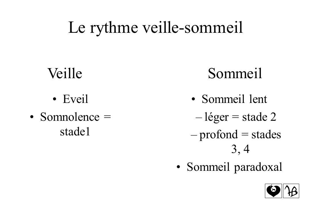 Le rythme veille-sommeil Sommeil lent –léger = stade 2 –profond = stades 3, 4 Sommeil paradoxal Veille Sommeil Eveil Somnolence = stade1