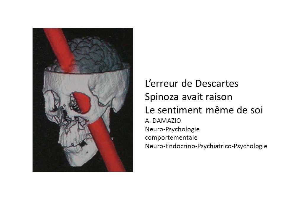 Lerreur de Descartes Spinoza avait raison Le sentiment même de soi A. DAMAZIO Neuro-Psychologie comportementale Neuro-Endocrino-Psychiatrico-Psycholog