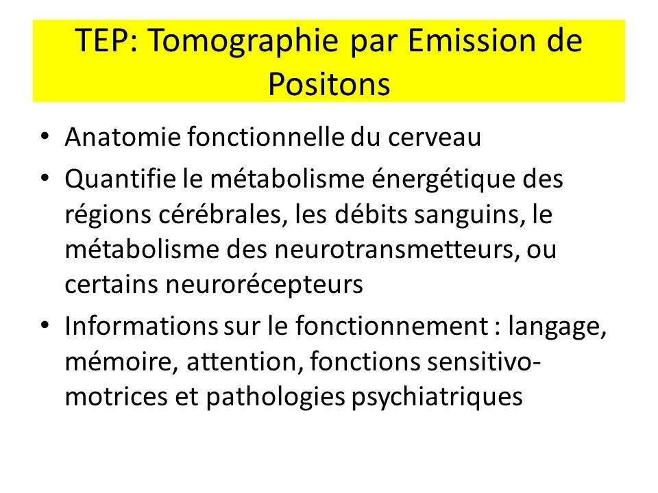 TEP: Tomographie par Emission de Positons Anatomie fonctionnelle du cerveau Quantifie le métabolisme énergétique des régions cérébrales, les débits sa