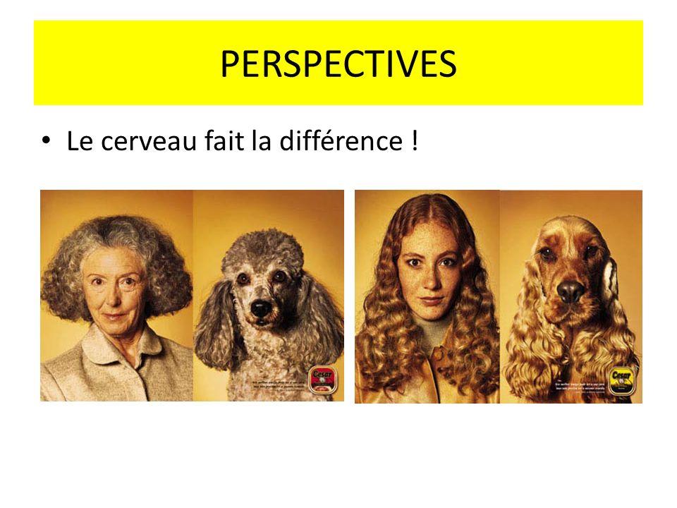 PERSPECTIVES Le cerveau fait la différence !