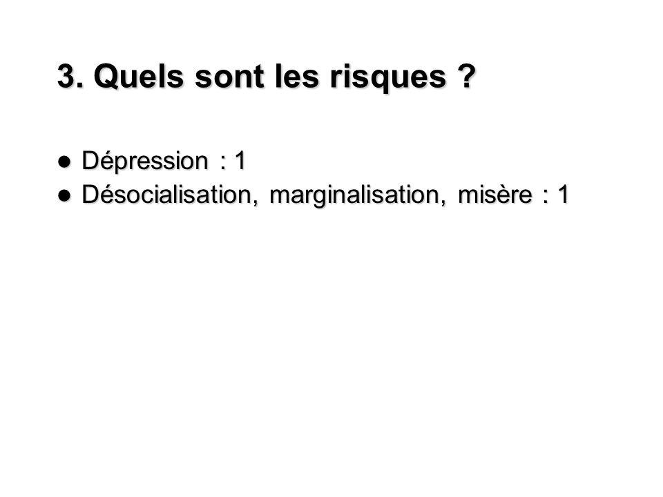 3. Quels sont les risques ? Dépression : 1 Dépression : 1 Désocialisation, marginalisation, misère : 1 Désocialisation, marginalisation, misère : 1