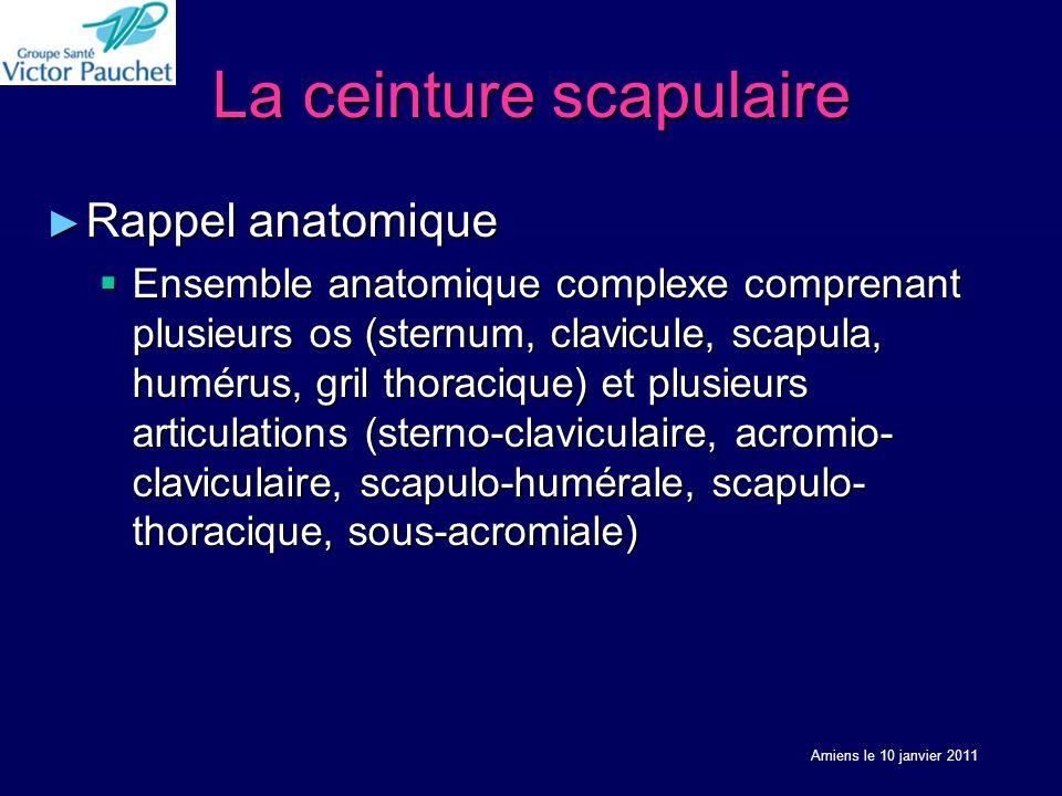 La ceinture scapulaire Rappel anatomique Rappel anatomique Ensemble anatomique complexe comprenant plusieurs os (sternum, clavicule, scapula, humérus,