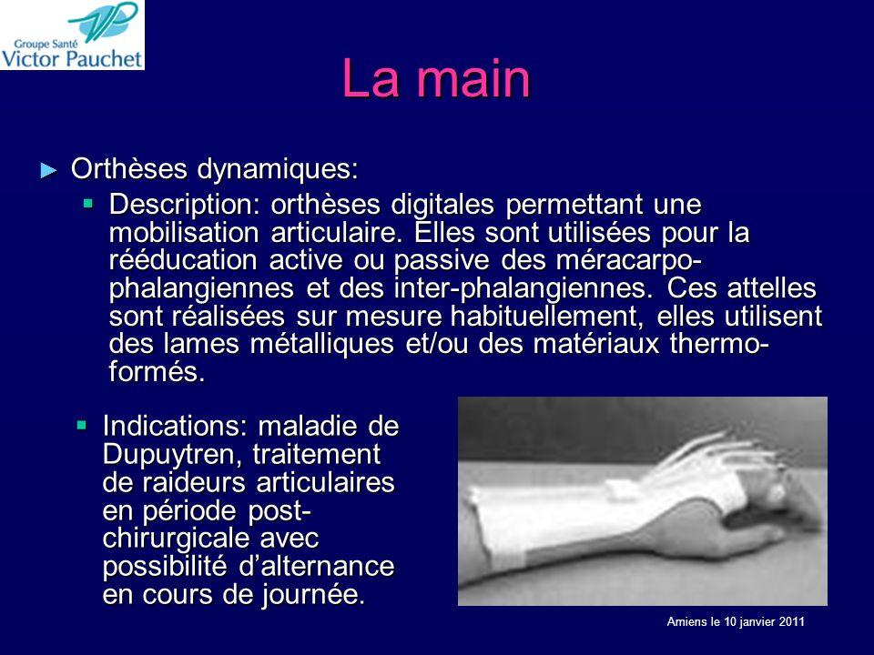La main Orthèses dynamiques: Orthèses dynamiques: Description: orthèses digitales permettant une mobilisation articulaire. Elles sont utilisées pour l