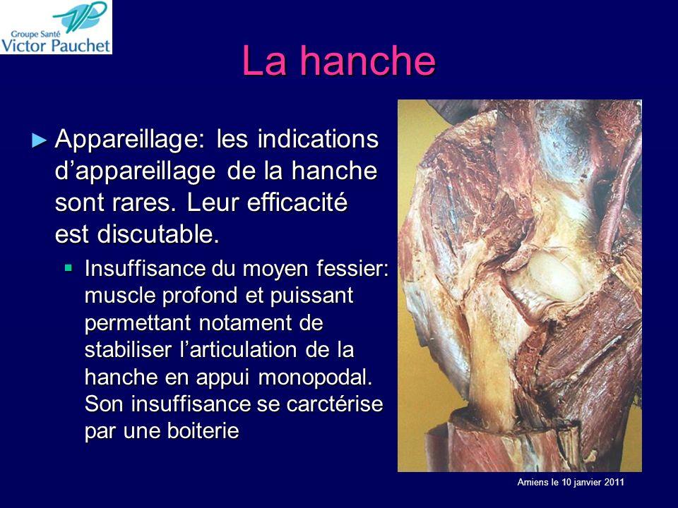 La hanche Appareillage: les indications dappareillage de la hanche sont rares. Leur efficacité est discutable. Appareillage: les indications dappareil