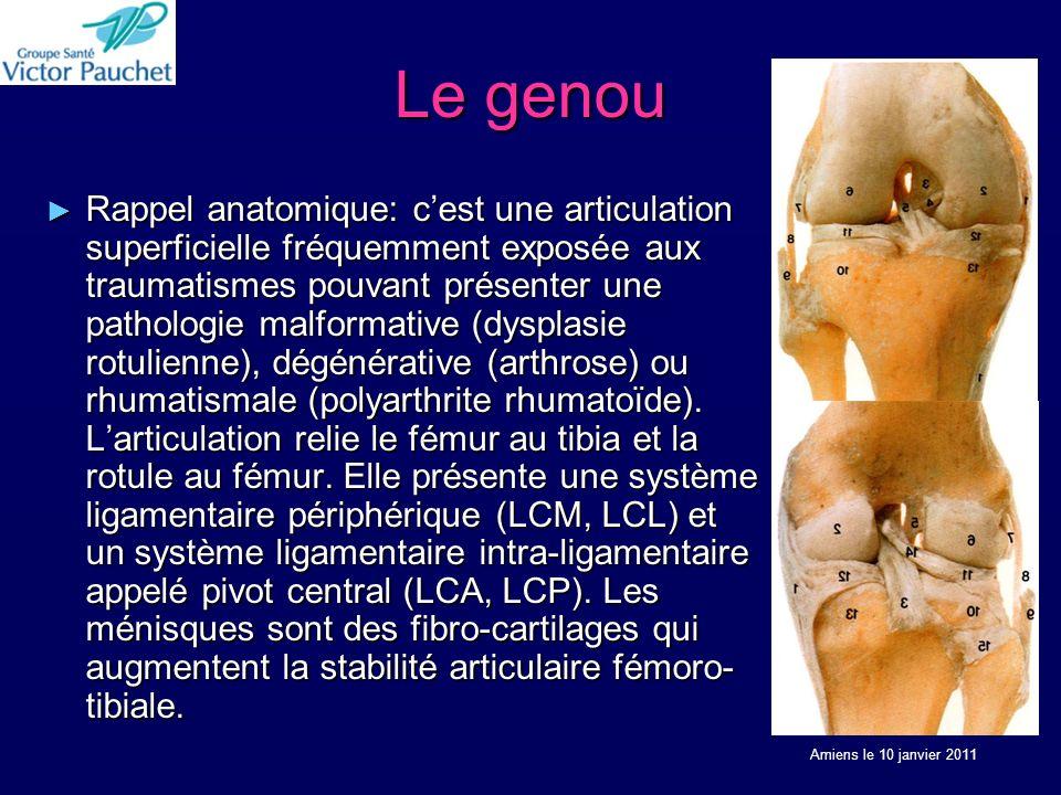Le genou Rappel anatomique: cest une articulation superficielle fréquemment exposée aux traumatismes pouvant présenter une pathologie malformative (dy