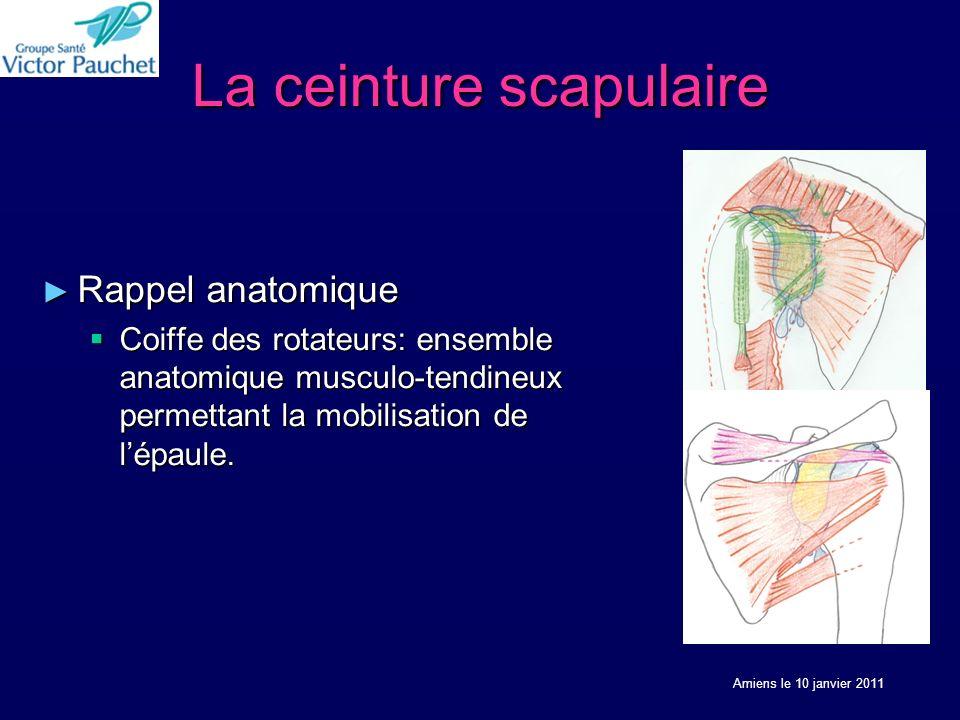 La ceinture scapulaire Rappel anatomique Rappel anatomique Coiffe des rotateurs: ensemble anatomique musculo-tendineux permettant la mobilisation de lépaule.