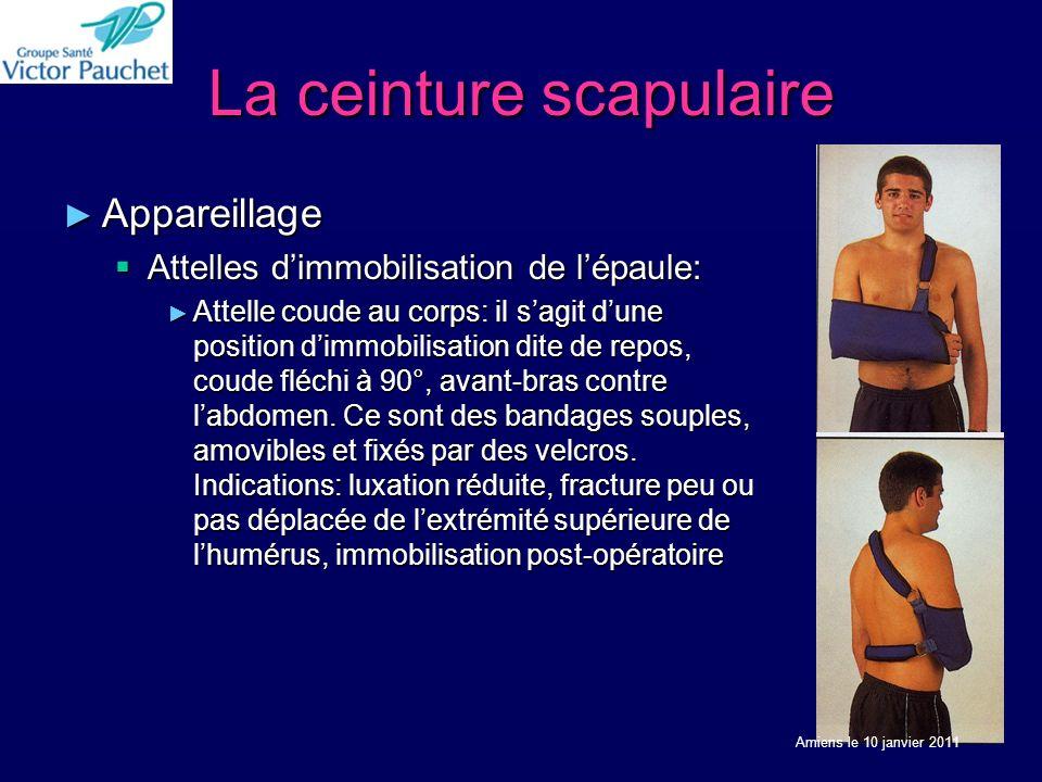 La ceinture scapulaire Appareillage Appareillage Attelles dimmobilisation de lépaule: Attelles dimmobilisation de lépaule: Attelle coude au corps: il