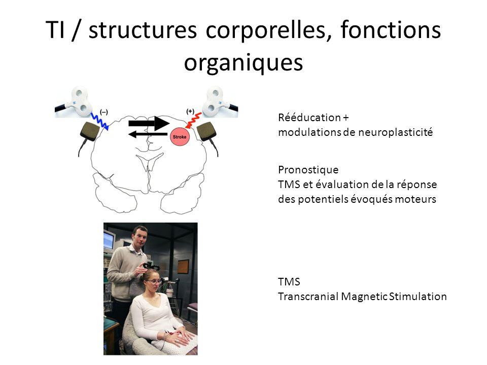 TI / structures corporelles, fonctions organiques Rééducation + modulations de neuroplasticité TMS Transcranial Magnetic Stimulation Pronostique TMS e