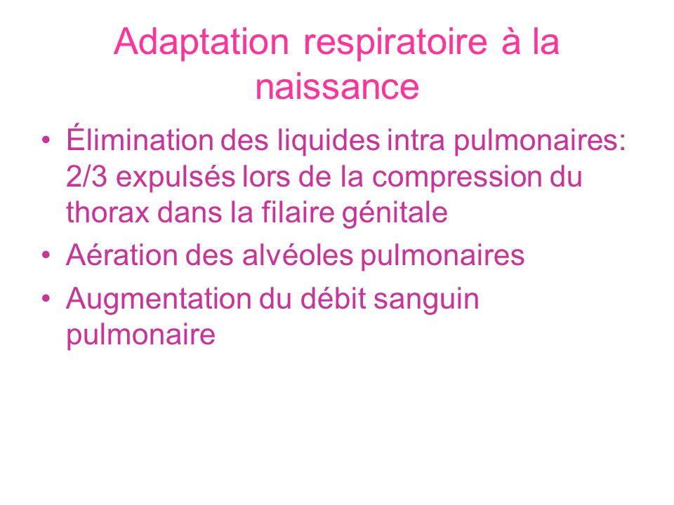 Adaptation respiratoire à la naissance Élimination des liquides intra pulmonaires: 2/3 expulsés lors de la compression du thorax dans la filaire génit