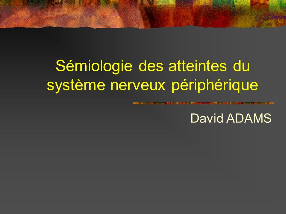 Sémiologie des atteintes du système nerveux périphérique David ADAMS