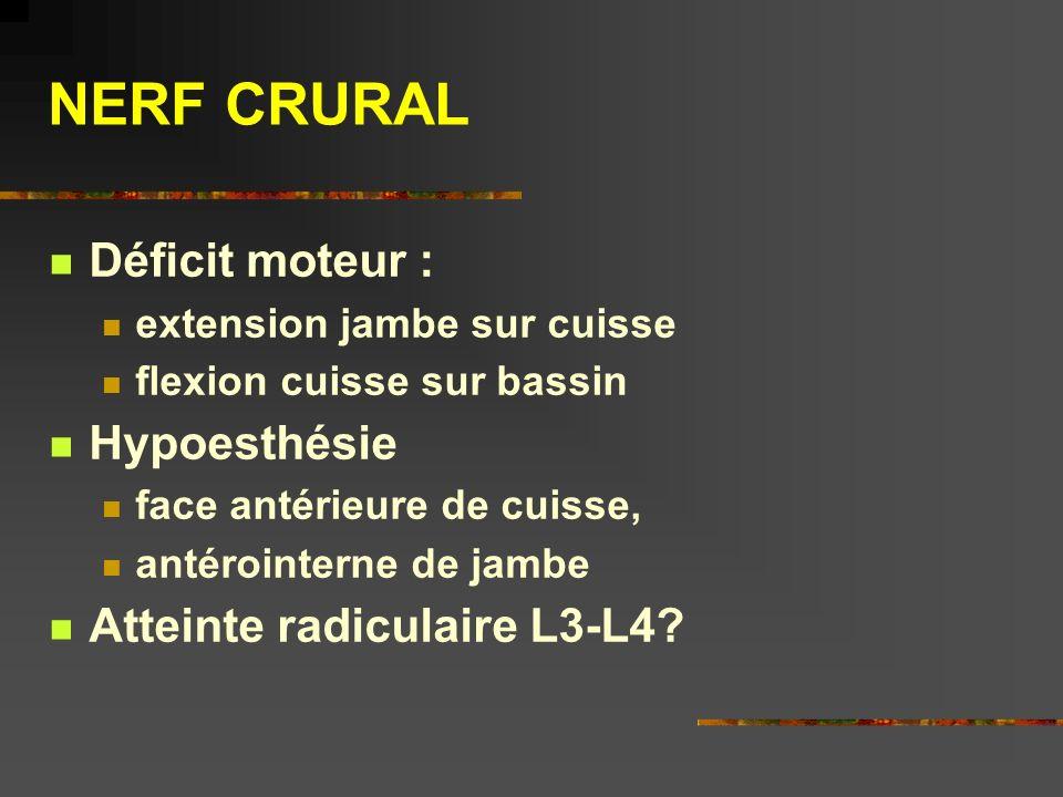 NERF CRURAL Déficit moteur : extension jambe sur cuisse flexion cuisse sur bassin Hypoesthésie face antérieure de cuisse, antérointerne de jambe Attei