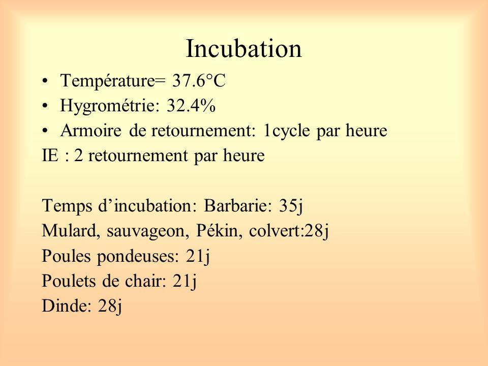 Incubation Température= 37.6°C Hygrométrie: 32.4% Armoire de retournement: 1cycle par heure IE : 2 retournement par heure Temps dincubation: Barbarie:
