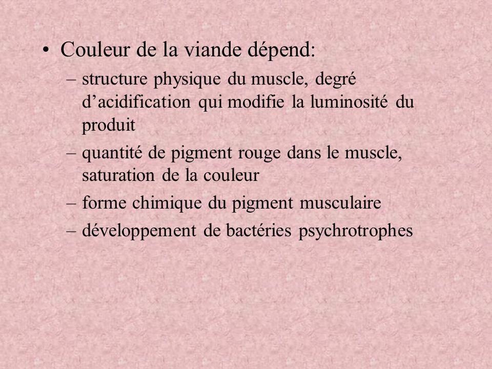 Couleur de la viande dépend: –structure physique du muscle, degré dacidification qui modifie la luminosité du produit –quantité de pigment rouge dans