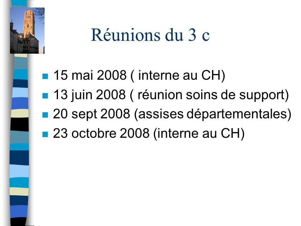 Réunions du 3 c n 15 mai 2008 ( interne au CH) n 13 juin 2008 ( réunion soins de support) n 20 sept 2008 (assises départementales) n 23 octobre 2008 (