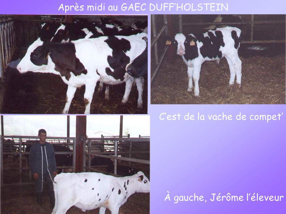 Après midi au GAEC DUFFHOLSTEIN Cest de la vache de compet À gauche, Jérôme léleveur