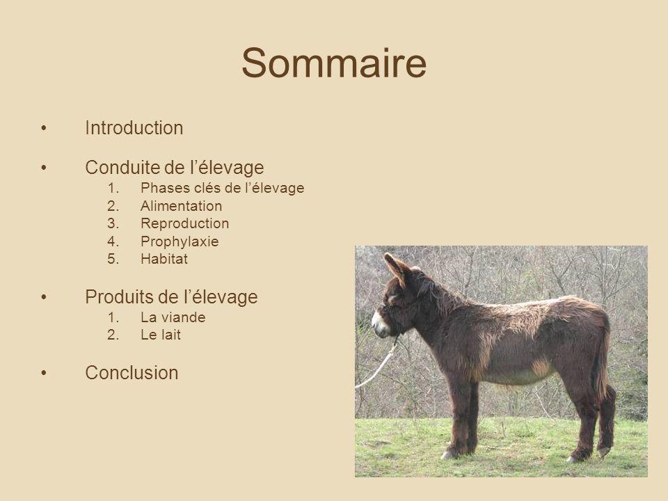 Sommaire Introduction Conduite de lélevage 1.Phases clés de lélevage 2.Alimentation 3.Reproduction 4.Prophylaxie 5.Habitat Produits de lélevage 1.La viande 2.Le lait Conclusion