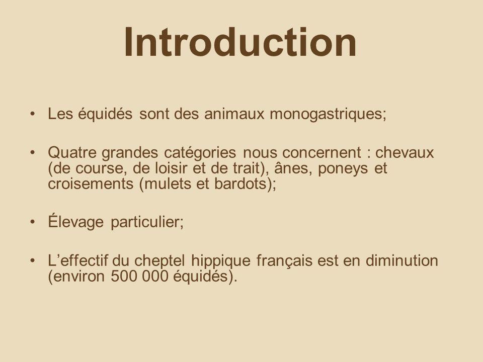 Introduction Les équidés sont des animaux monogastriques; Quatre grandes catégories nous concernent : chevaux (de course, de loisir et de trait), ânes, poneys et croisements (mulets et bardots); Élevage particulier; Leffectif du cheptel hippique français est en diminution (environ 500 000 équidés).