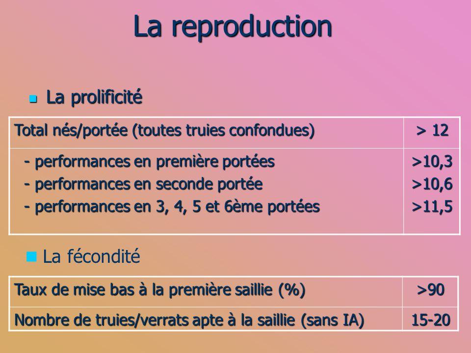 La reproduction La prolificité La prolificité Total nés/portée (toutes truies confondues) > 12 - performances en première portées - performances en pr