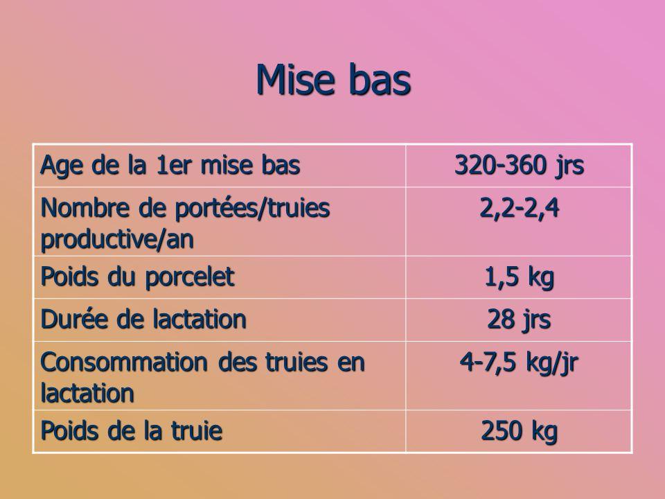 Mise bas Age de la 1er mise bas 320-360 jrs Nombre de portées/truies productive/an 2,2-2,4 Poids du porcelet 1,5 kg Durée de lactation 28 jrs Consomma