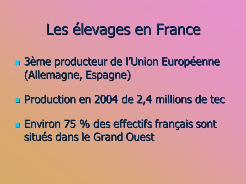 Les élevages en France 3ème producteur de lUnion Européenne (Allemagne, Espagne) 3ème producteur de lUnion Européenne (Allemagne, Espagne) Production