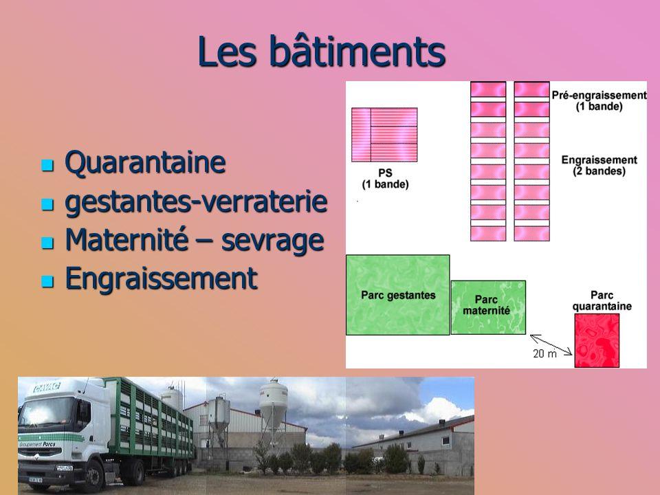 Les bâtiments Quarantaine Quarantaine gestantes-verraterie gestantes-verraterie Maternité – sevrage Maternité – sevrage Engraissement Engraissement