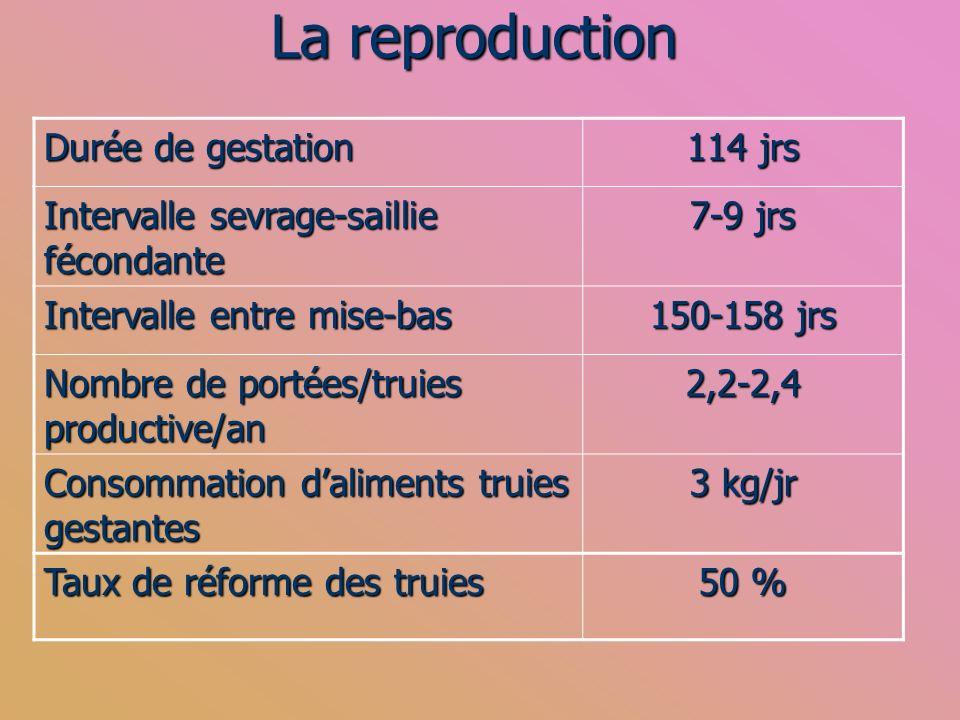 La reproduction Durée de gestation 114 jrs Intervalle sevrage-saillie fécondante 7-9 jrs Intervalle entre mise-bas 150-158 jrs Nombre de portées/truie