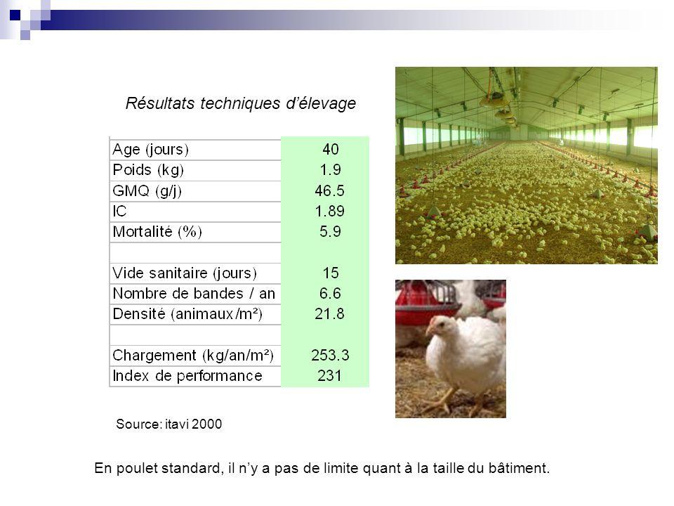 Source: itavi 2000 Résultats techniques délevage En poulet standard, il ny a pas de limite quant à la taille du bâtiment.
