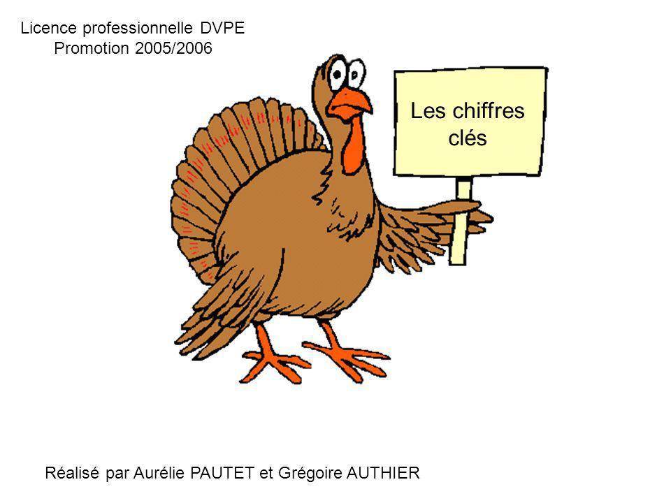 Les chiffres clés Réalisé par Aurélie PAUTET et Grégoire AUTHIER Licence professionnelle DVPE Promotion 2005/2006