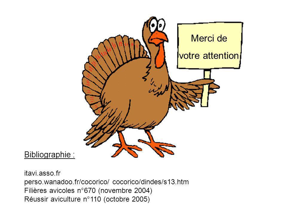 Merci de votre attention Bibliographie : itavi.asso.fr perso.wanadoo.fr/cocorico/ cocorico/dindes/s13.htm Filières avicoles n°670 (novembre 2004) Réus