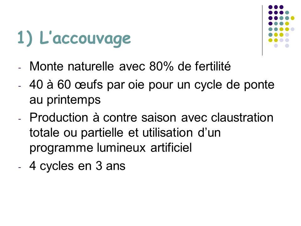 1) Laccouvage - Monte naturelle avec 80% de fertilité - 40 à 60 œufs par oie pour un cycle de ponte au printemps - Production à contre saison avec claustration totale ou partielle et utilisation dun programme lumineux artificiel - 4 cycles en 3 ans