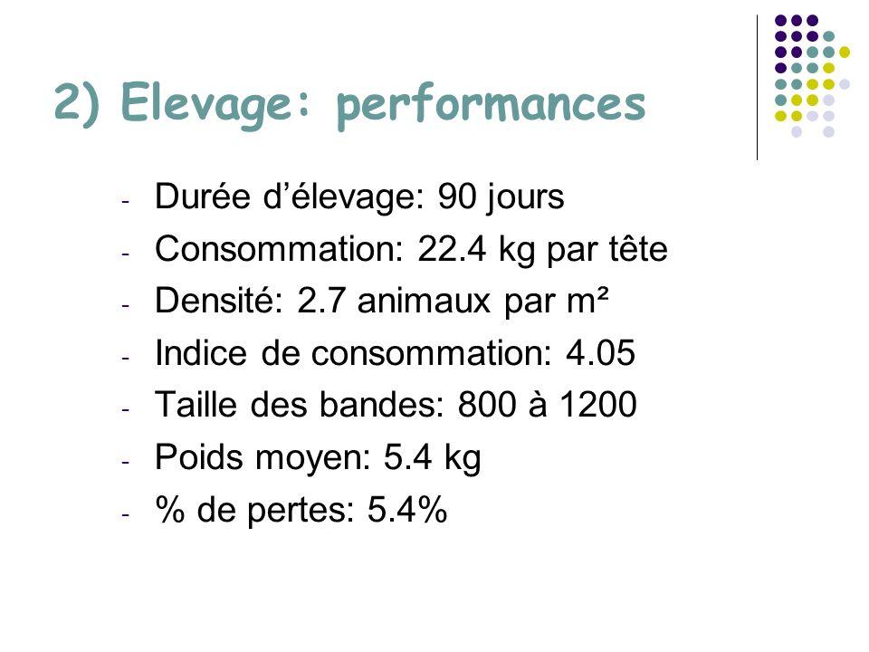 2) Elevage: performances - Durée délevage: 90 jours - Consommation: 22.4 kg par tête - Densité: 2.7 animaux par m² - Indice de consommation: 4.05 - Taille des bandes: 800 à 1200 - Poids moyen: 5.4 kg - % de pertes: 5.4%