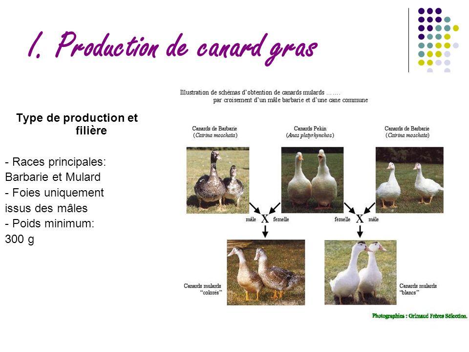 I. Production de canard gras Type de production et filière - Races principales: Barbarie et Mulard - Foies uniquement issus des mâles - Poids minimum: