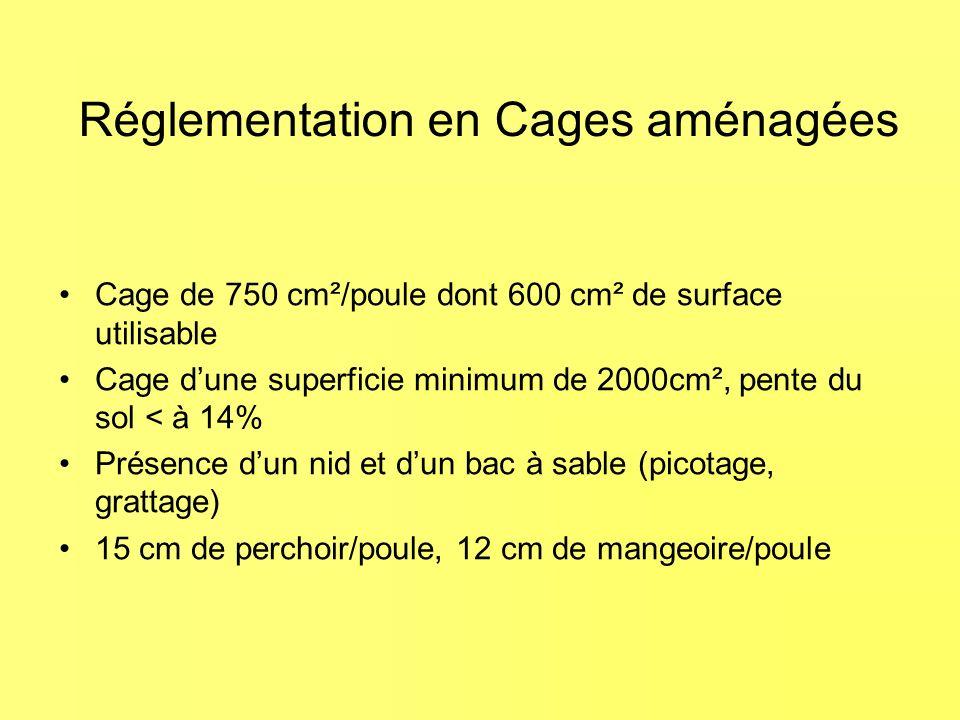 Réglementation en Cages aménagées Cage de 750 cm²/poule dont 600 cm² de surface utilisable Cage dune superficie minimum de 2000cm², pente du sol < à 14% Présence dun nid et dun bac à sable (picotage, grattage) 15 cm de perchoir/poule, 12 cm de mangeoire/poule
