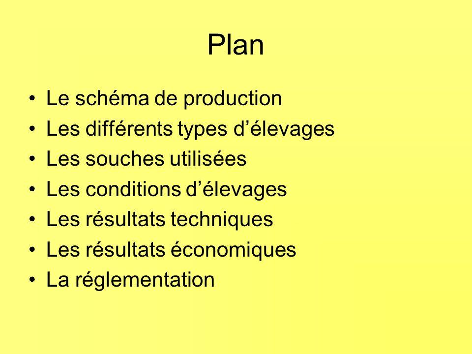 Plan Le schéma de production Les différents types délevages Les souches utilisées Les conditions délevages Les résultats techniques Les résultats économiques La réglementation