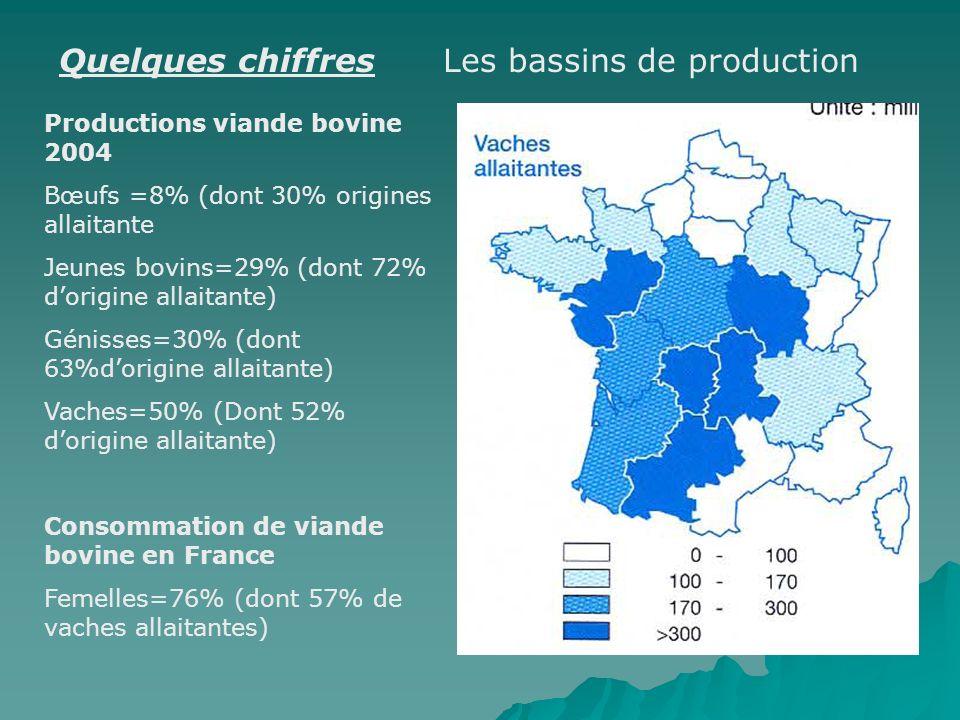 Quelques chiffres Les bassins de production Productions viande bovine 2004 Bœufs =8% (dont 30% origines allaitante Jeunes bovins=29% (dont 72% dorigin