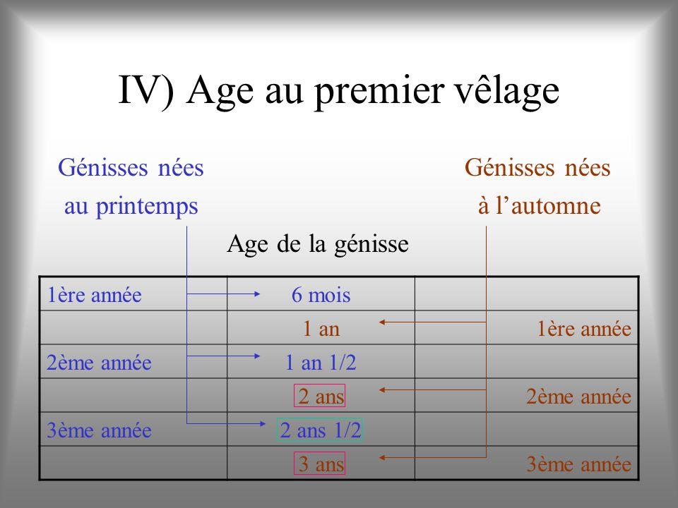 IV) Age au premier vêlage Génisses nées au printemps à lautomne Age de la génisse 1ère année6 mois 1 an1ère année 2ème année1 an 1/2 2 ans2ème année 3