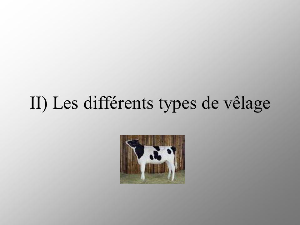 II) Les différents types de vêlage