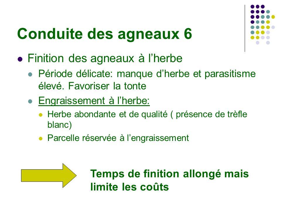 Conduite des agneaux 6 Finition des agneaux à lherbe Période délicate: manque dherbe et parasitisme élevé.