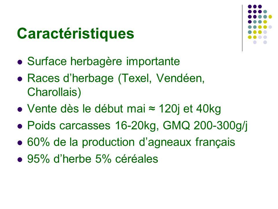 Caractéristiques Surface herbagère importante Races dherbage (Texel, Vendéen, Charollais) Vente dès le début mai 120j et 40kg Poids carcasses 16-20kg, GMQ 200-300g/j 60% de la production dagneaux français 95% dherbe 5% céréales