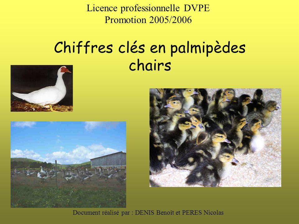 Chiffres clés en palmipèdes chairs Document réalisé par : DENIS Benoît et PERES Nicolas Licence professionnelle DVPE Promotion 2005/2006