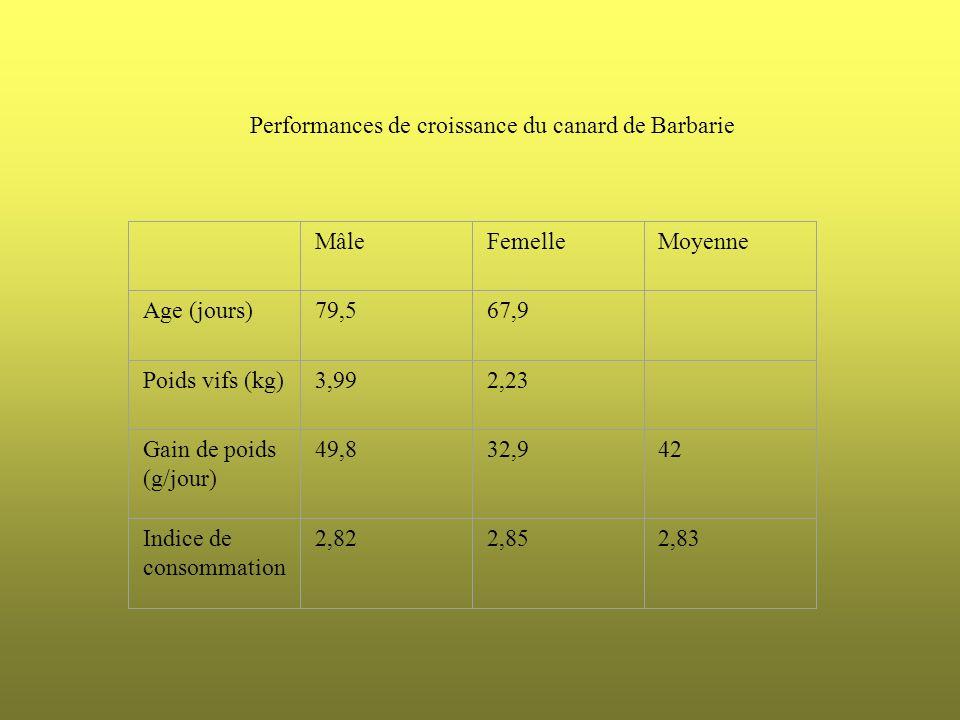 MâleFemelleMoyenne Age (jours)79,567,9 Poids vifs (kg)3,992,23 Gain de poids (g/jour) 49,832,942 Indice de consommation 2,822,852,83 Performances de c