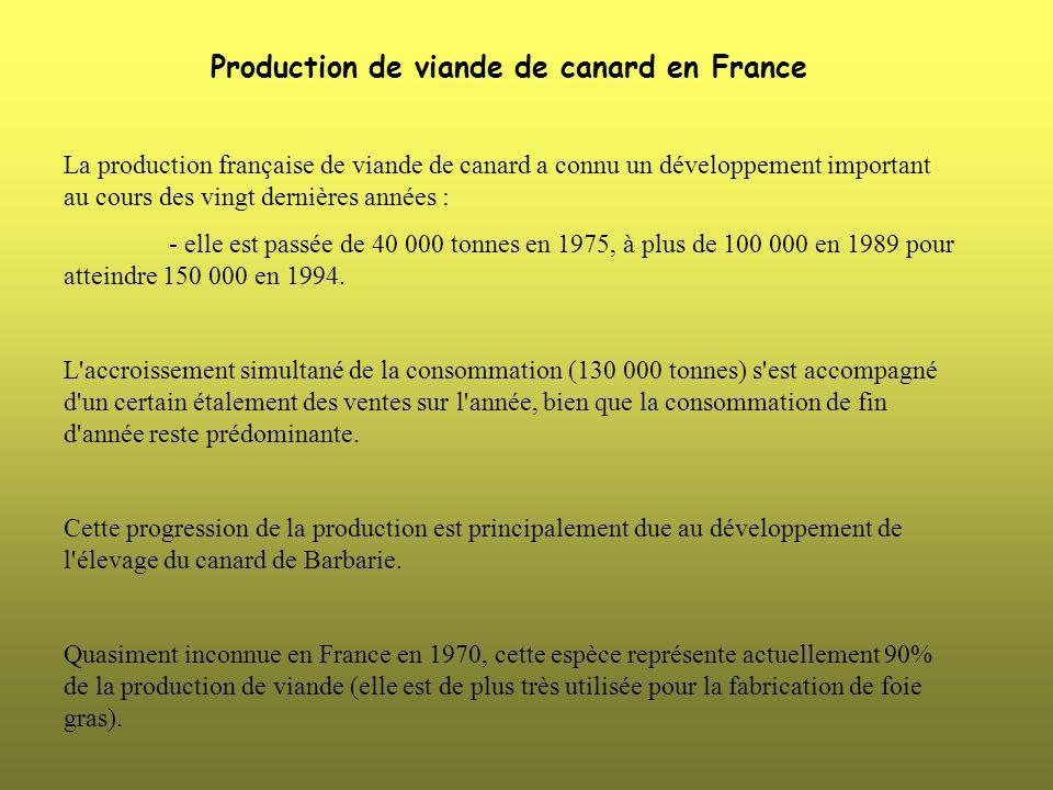 Production de viande de canard en France La production française de viande de canard a connu un développement important au cours des vingt dernières a