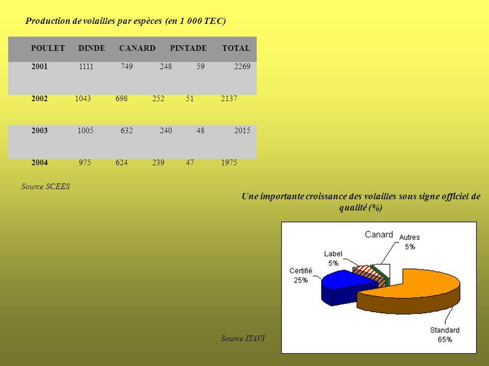 20011111749248592269 2002104369825251 2137 20031005632240482015 2004975624239471975 Source SCEES POULETDINDECANARDPINTADETOTAL Production de volailles