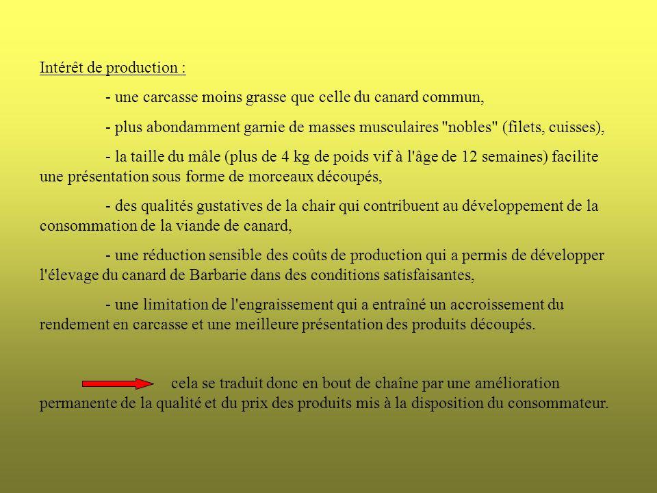 MâleFemelleMoyenne Age (jours)79,567,9 Poids vifs (kg)3,992,23 Gain de poids (g/jour) 49,832,942 Indice de consommation 2,822,852,83 Performances de croissance du canard de Barbarie