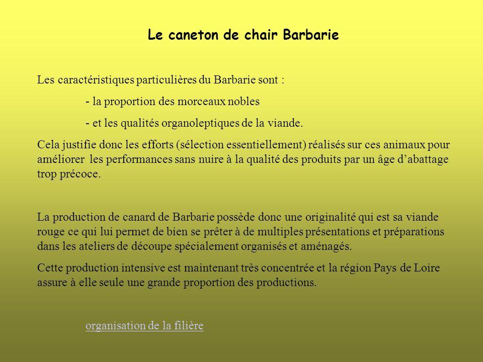 Le caneton de chair Barbarie Les caractéristiques particulières du Barbarie sont : - la proportion des morceaux nobles - et les qualités organoleptiqu