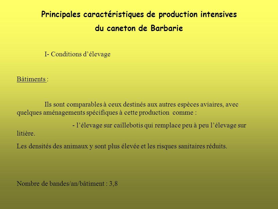 Principales caractéristiques de production intensives du caneton de Barbarie I- Conditions délevage Bâtiments : Ils sont comparables à ceux destinés a